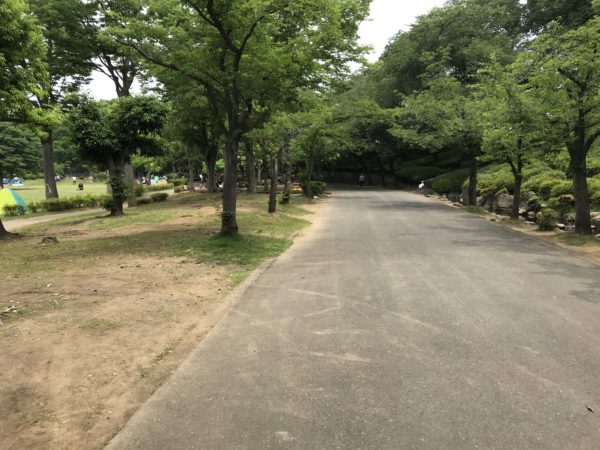 上尾丸山公園内の写真