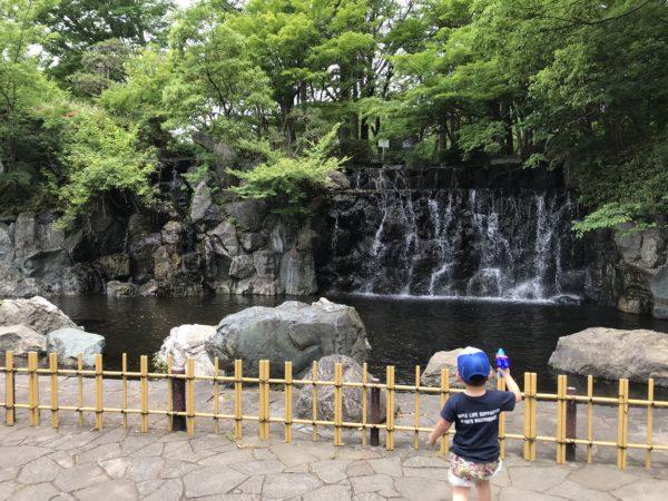 上尾丸山公園内の滝の写真