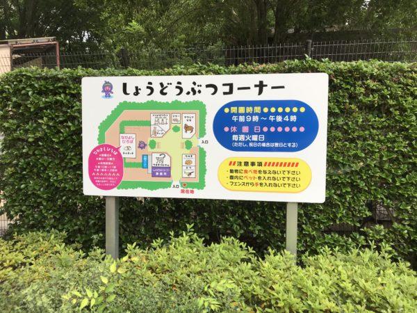上尾丸山公園小動物コーナーの写真
