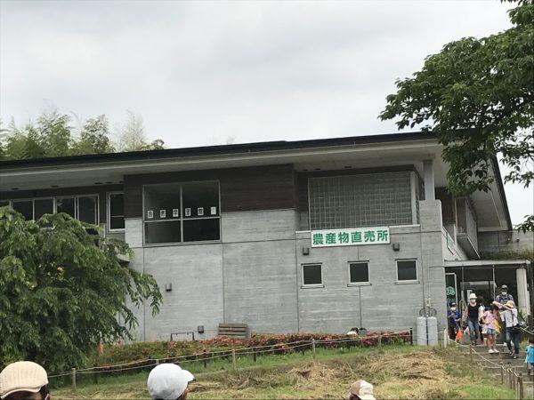 上尾丸山公園自然館の写真