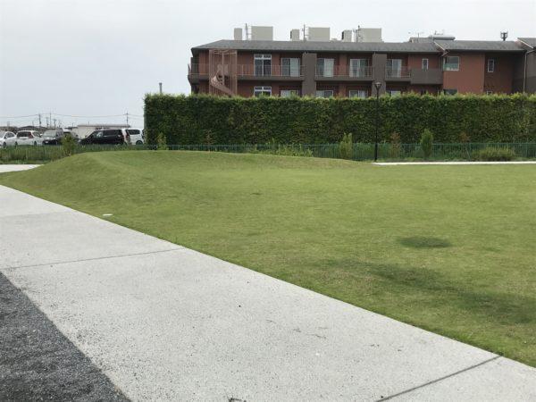 小仙波八反田公園芝生の丘の写真