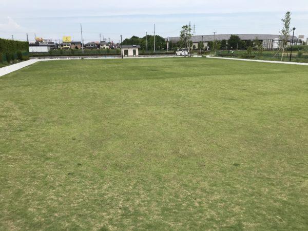 小仙波八反田公園芝生の写真