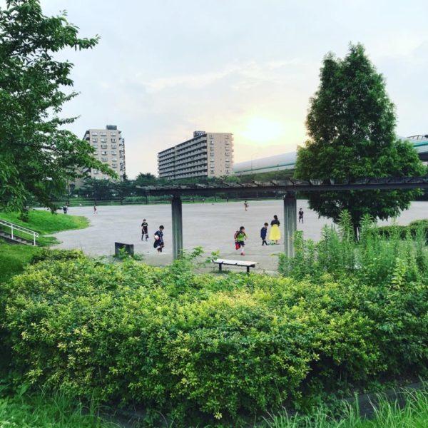 滝沼川第二遊水地の写真