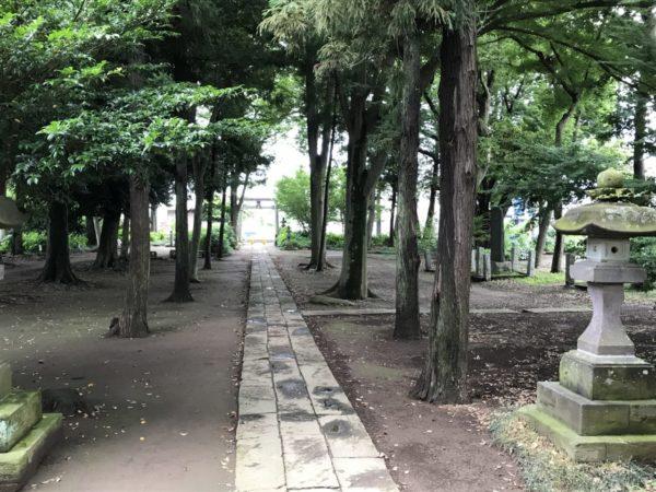 指扇氷川神社の石畳の写真