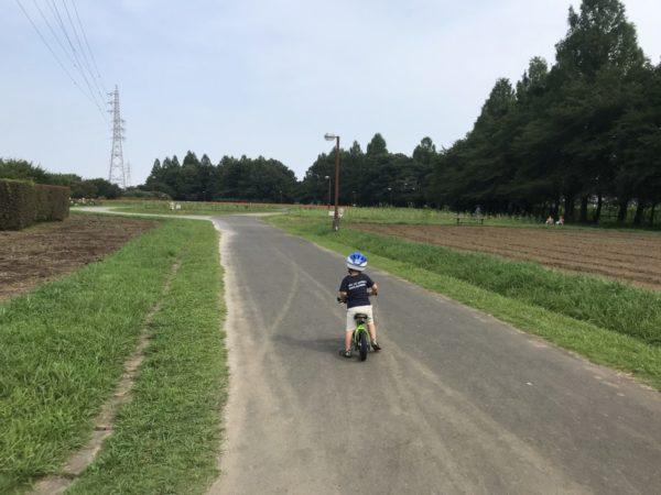 公苑内で自転車を乗る子供の写真