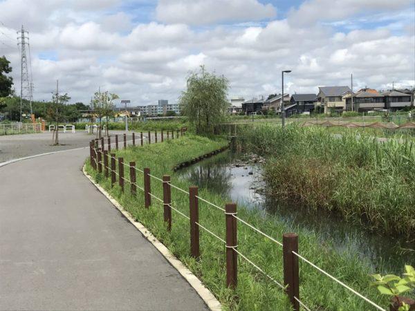 戸崎公園の小川の写真