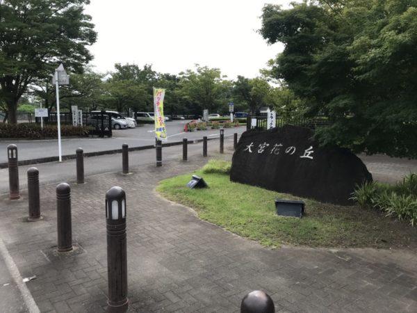 大宮花の丘農林公苑入口の写真