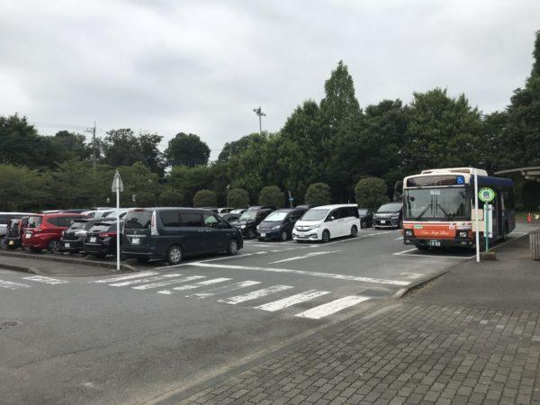 大宮花の丘農林公苑の駐車場の写真