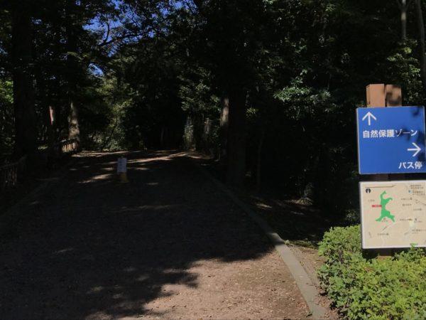 秋葉の森公園の自然保護ゾーン入口の写真